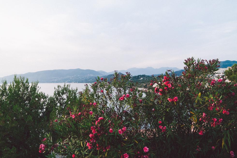 palinuro 1 flora wistrom-4