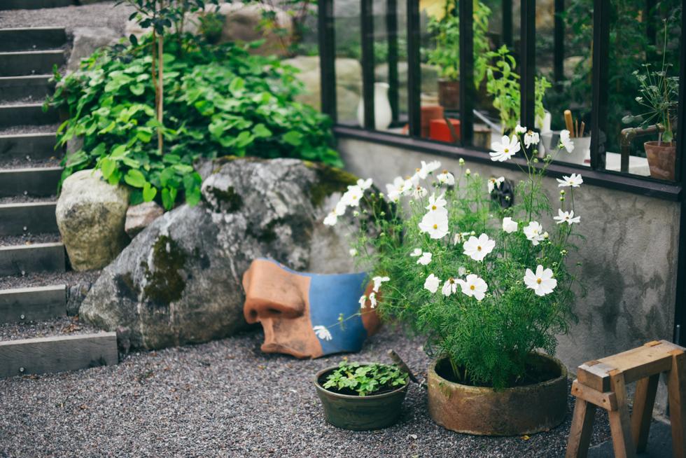 kummelnäs flora wiström-11