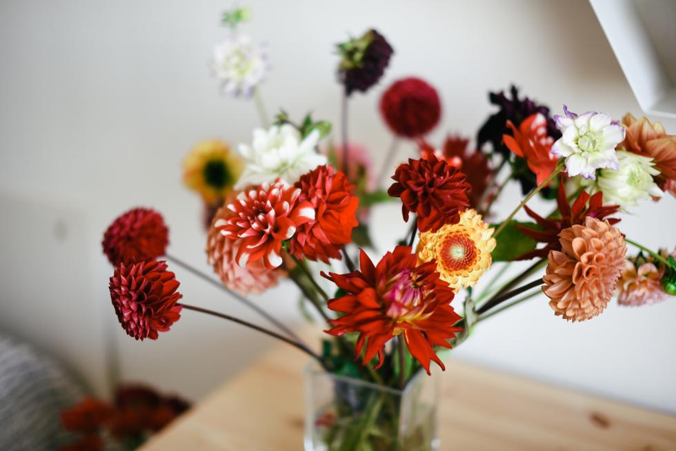 blomhav flora wiström -4s