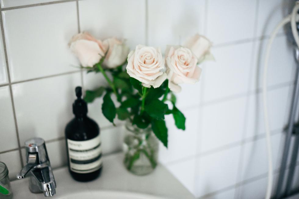 blomhav flora wiström -9s