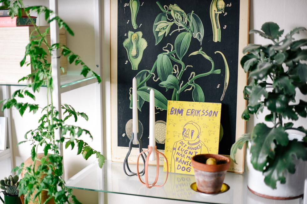 tomatplanta flora wiström -4s