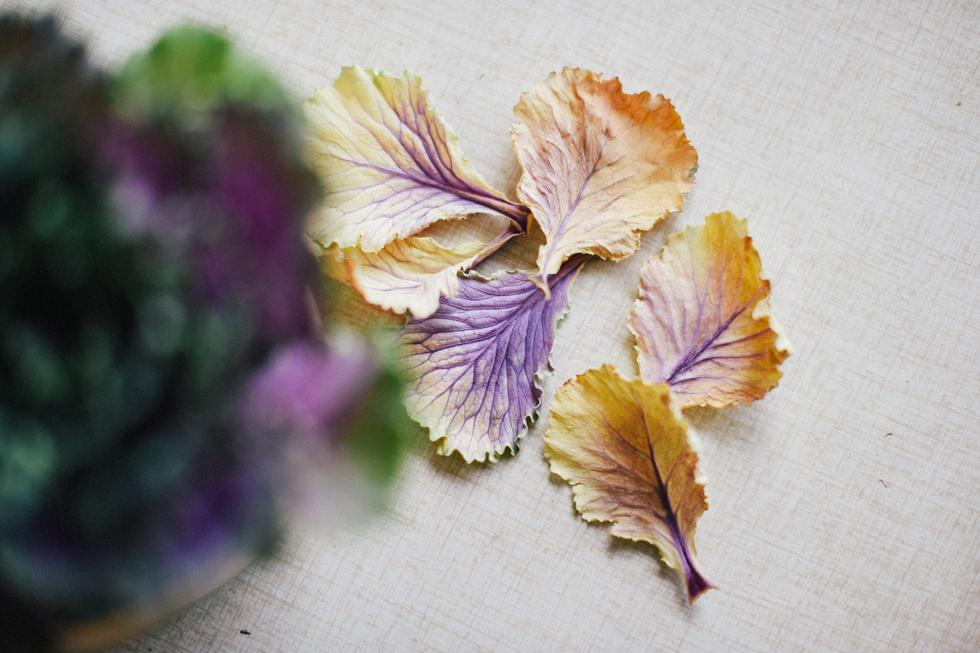 MORGONPROMENAD flora wiström -11s