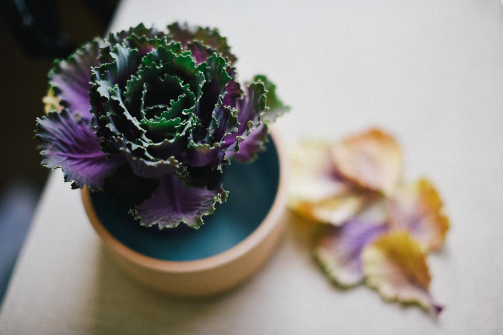 MORGONPROMENAD flora wiström -12s