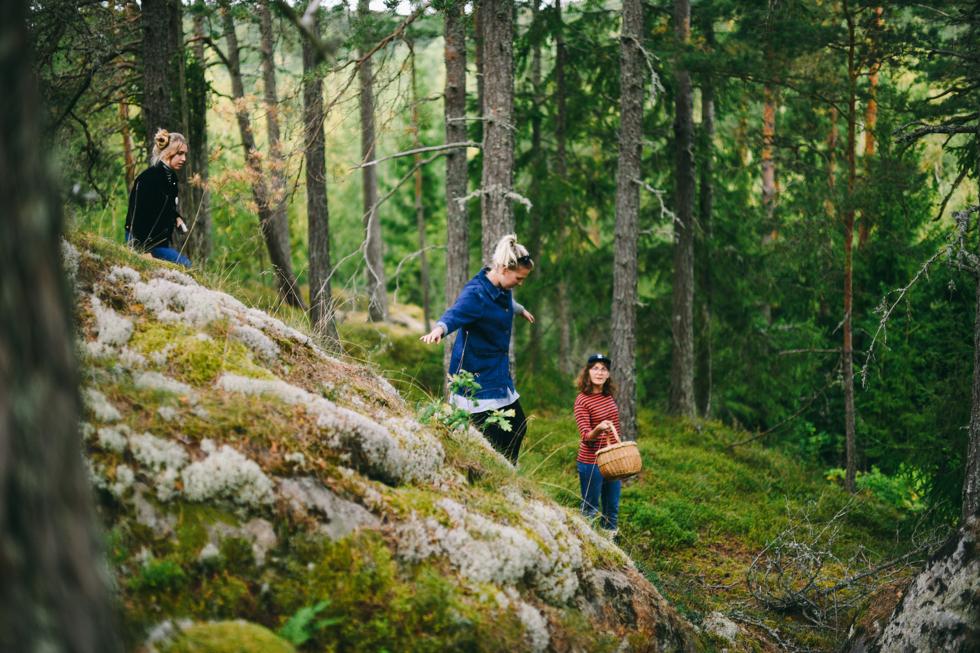 Sågaretorp Flora Wiström -32s