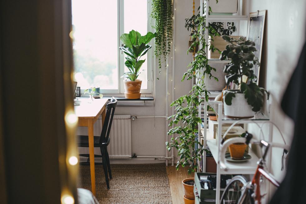 flora wiström lägenhet