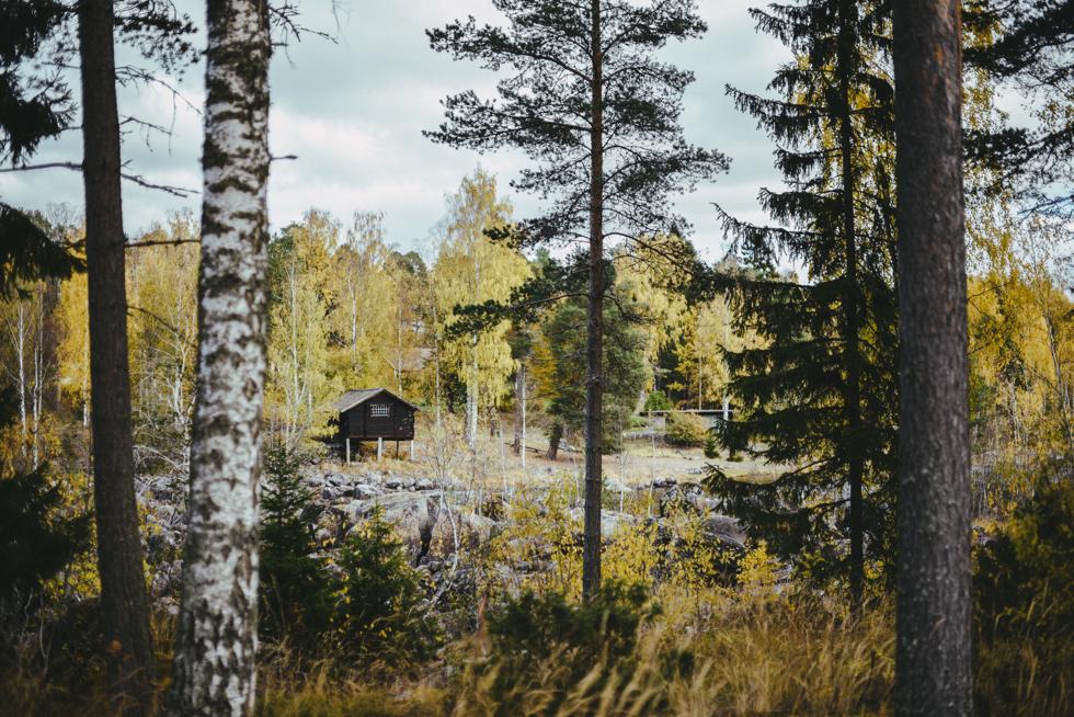 hälsingland isak flora wiström-18
