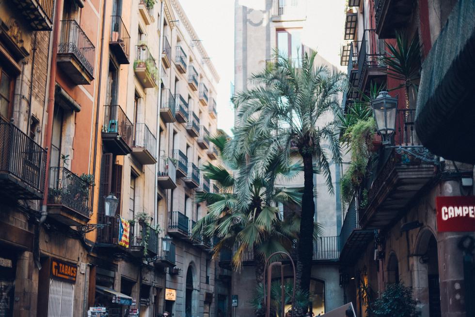 Yrsa Flora Barcelona18