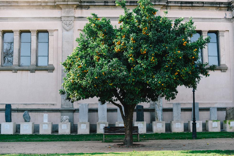 yrsa flora barcelona24