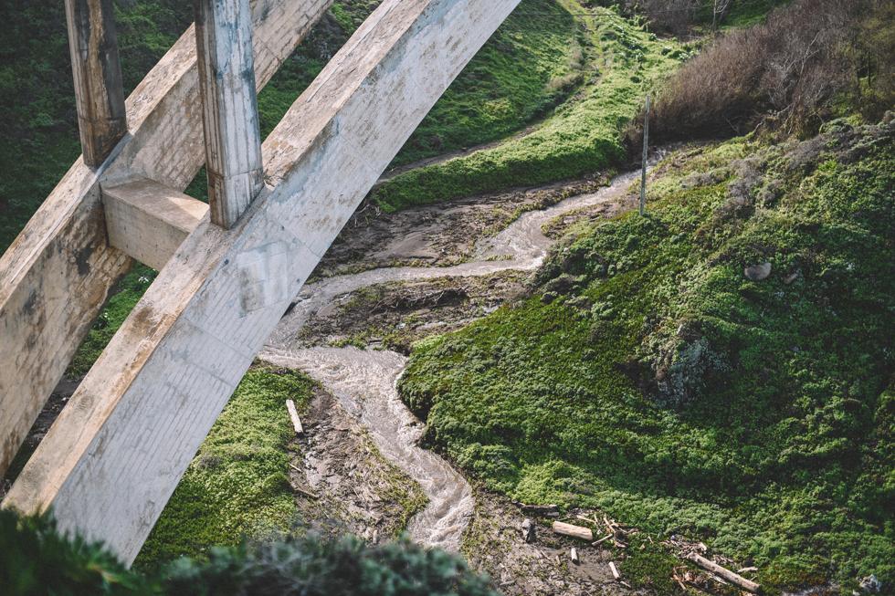 big-sur-santa-cruz-flora-wistrom11