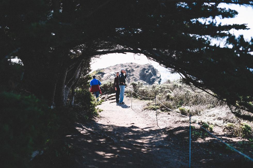 big-sur-santa-cruz-flora-wistrom14