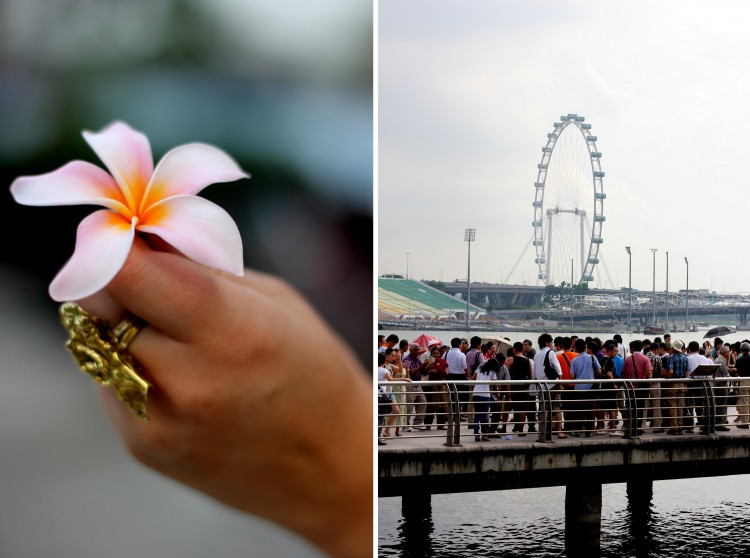 Singapore 201329