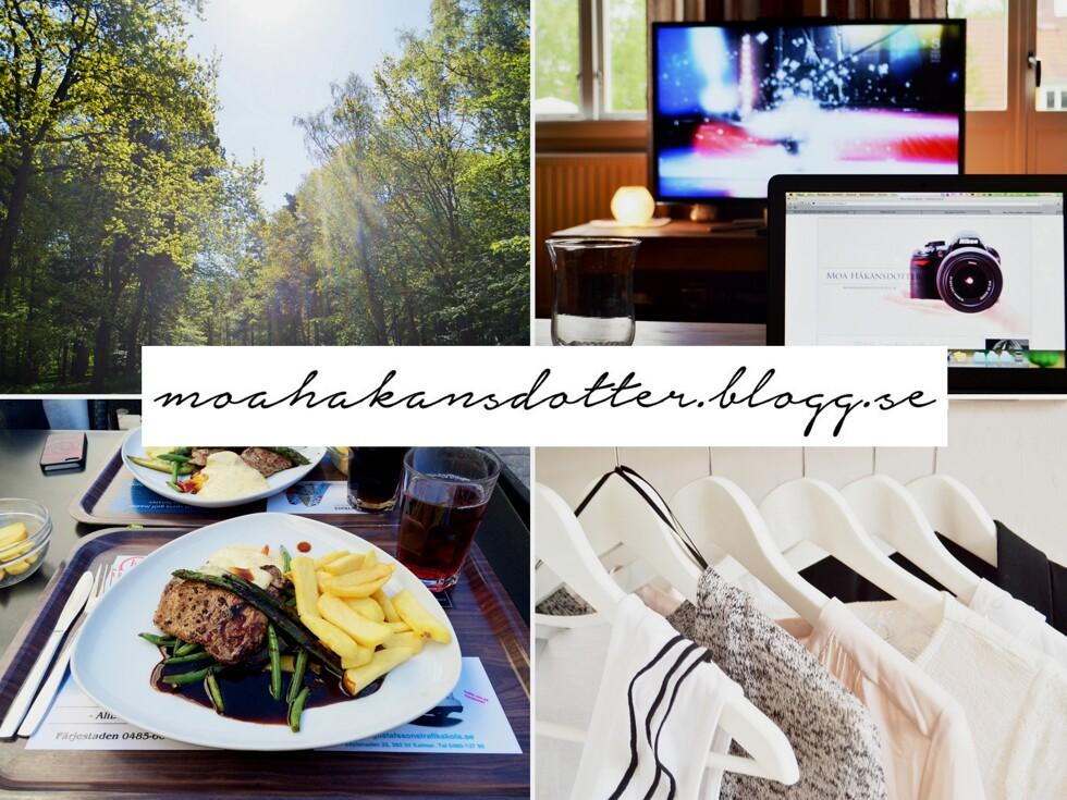 blogg3