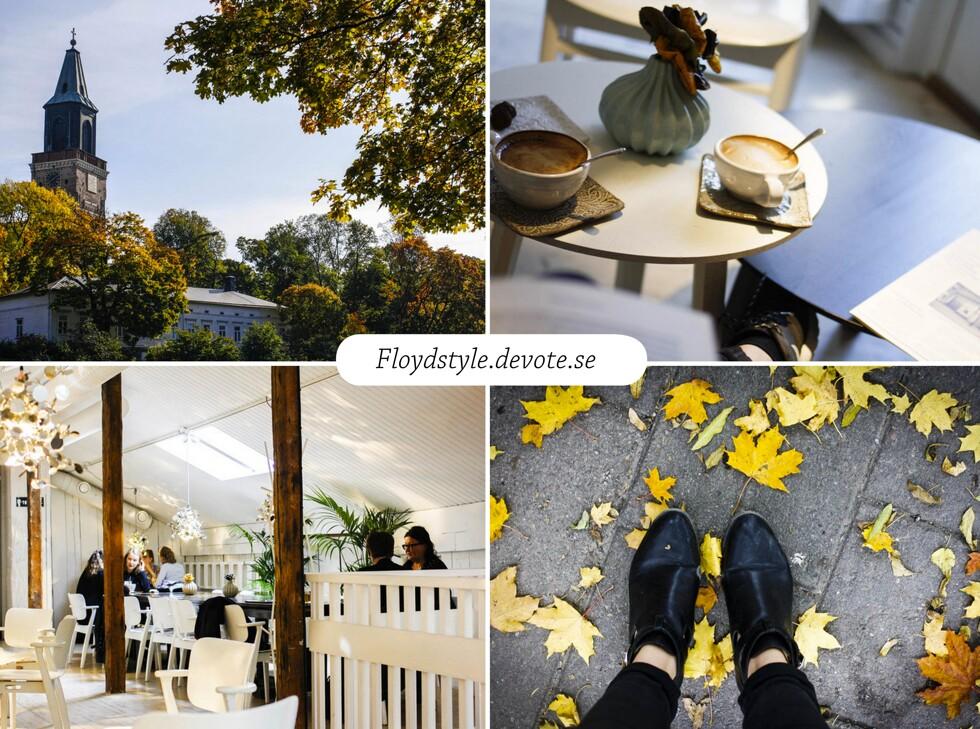 blogg-floyd(2)