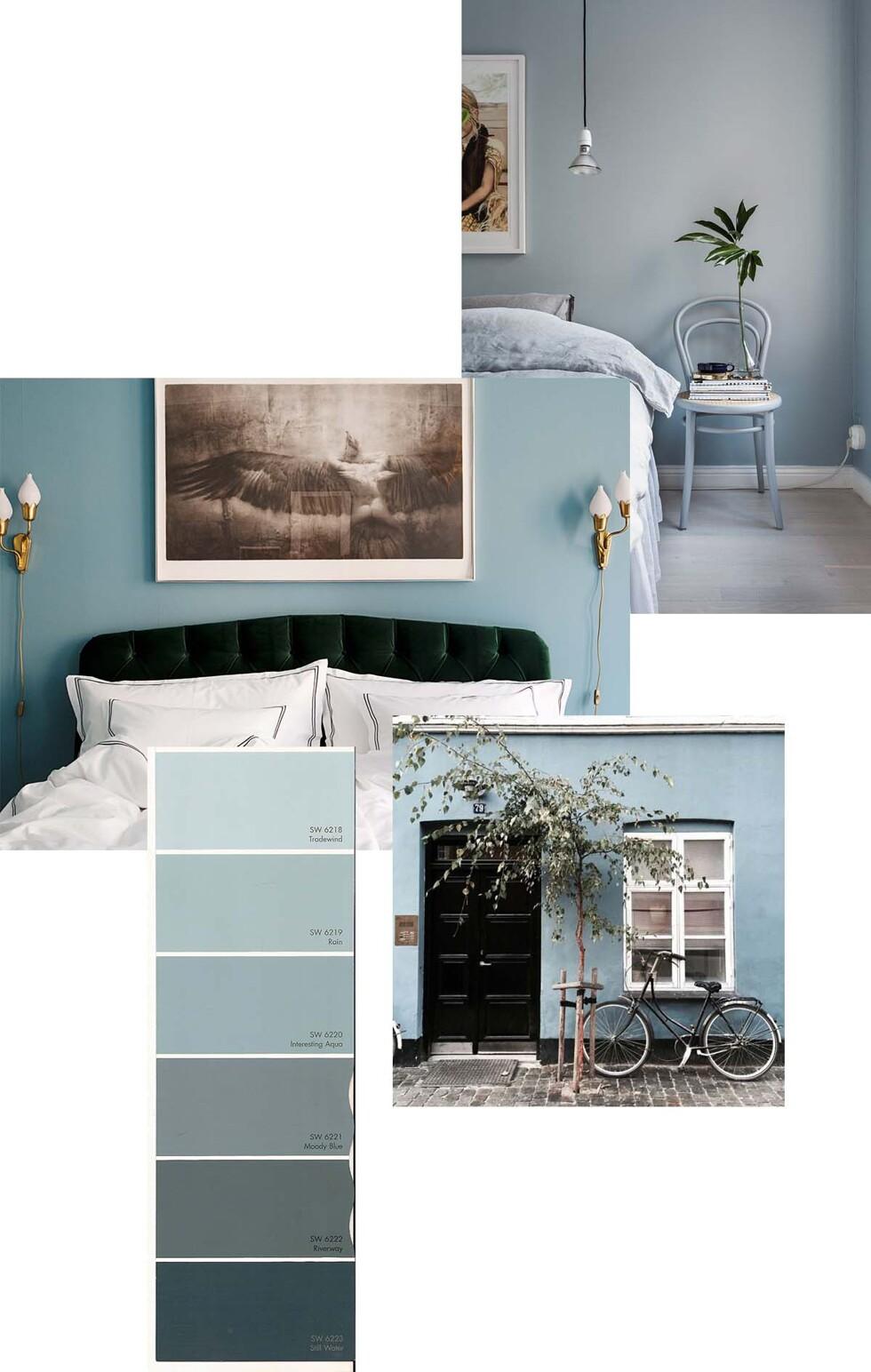 Blue Grey Wallm Colour