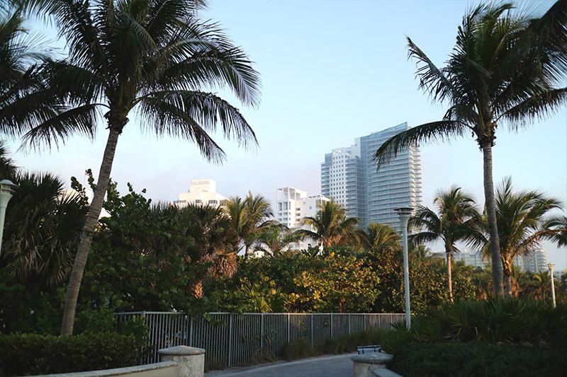 fanny-ekstrand-miami-south-beach