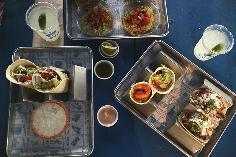 fanny-ekstrand-miami-tacos