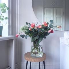 FranskTulpaner-Rosor-Eucalyptus-AmmiMajus_medium