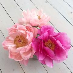 Pioneer_tva_sorter_Flowery_prenumeration_stockholm_medium