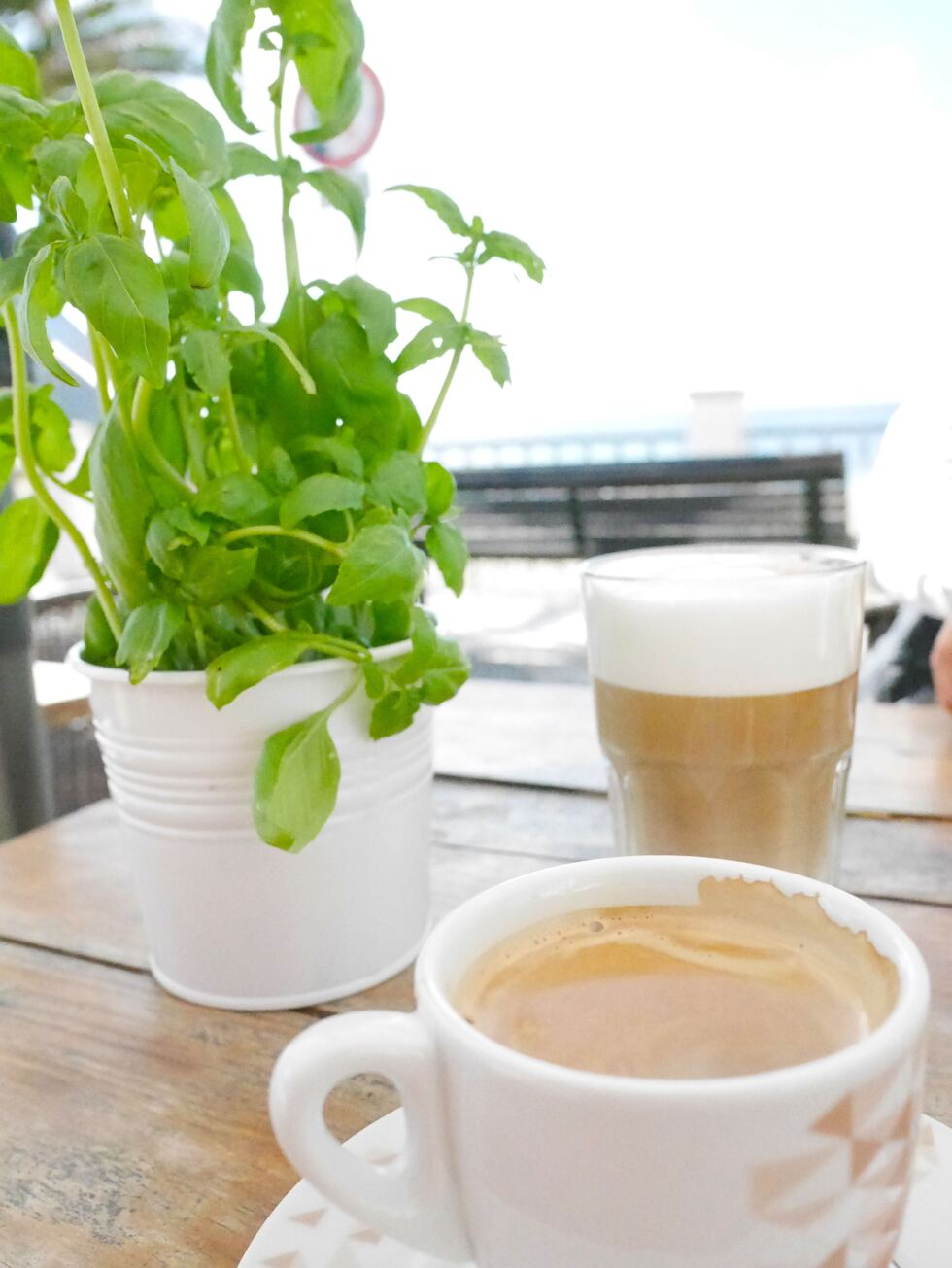kaffe kevin triguero