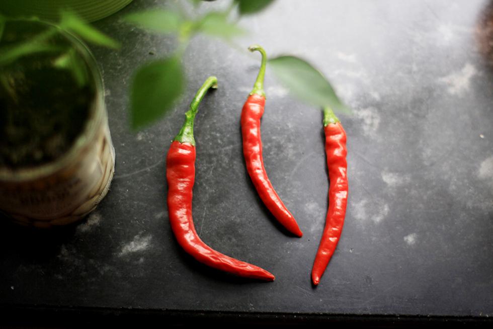 egenodlad chilli