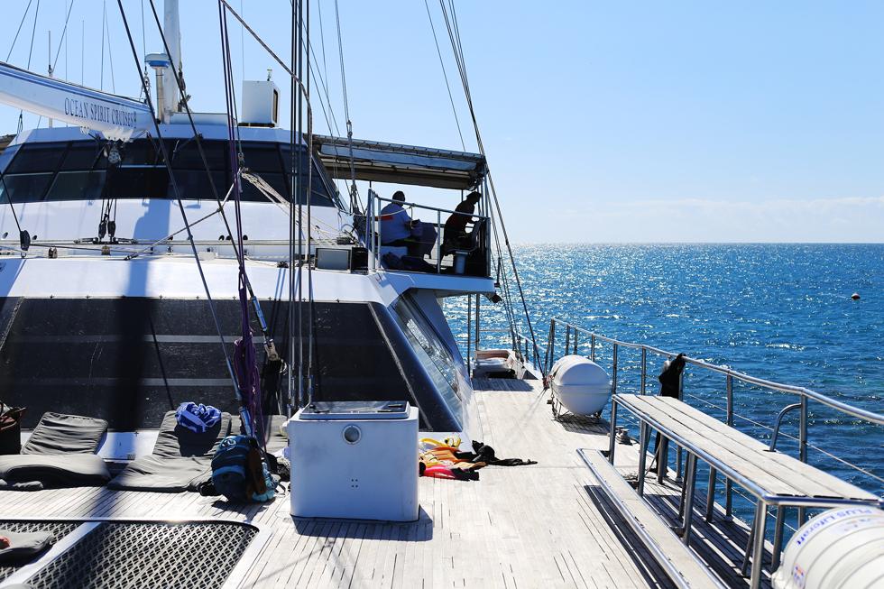 en båttur vid stora barriärrevet50