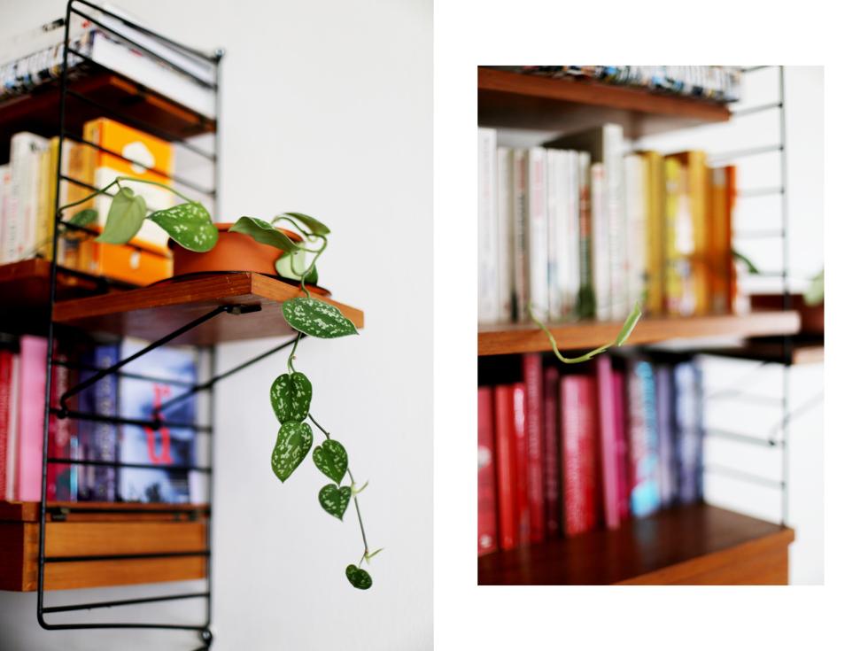 det gröna i vårt hem15
