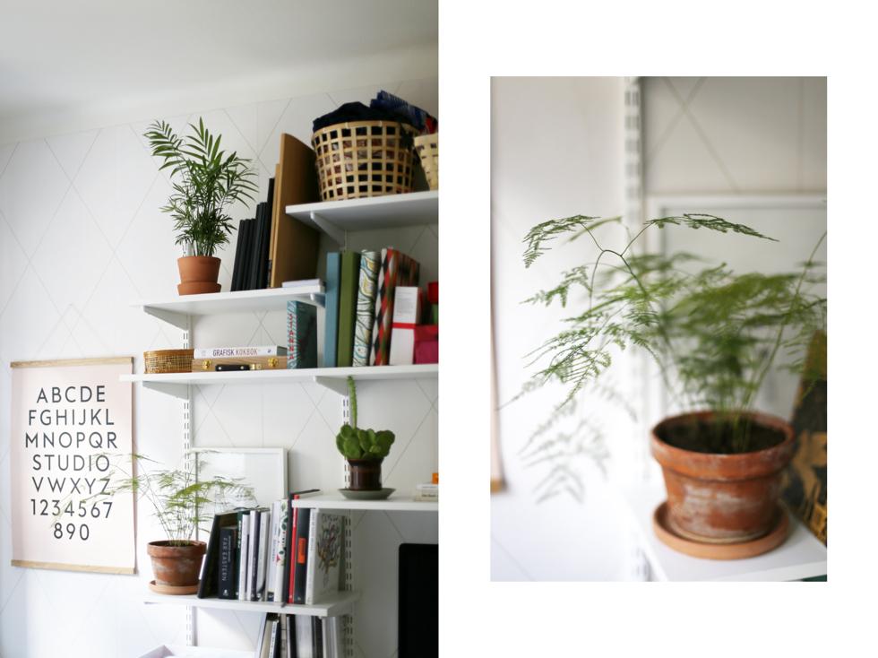 det gröna i vårt hem3
