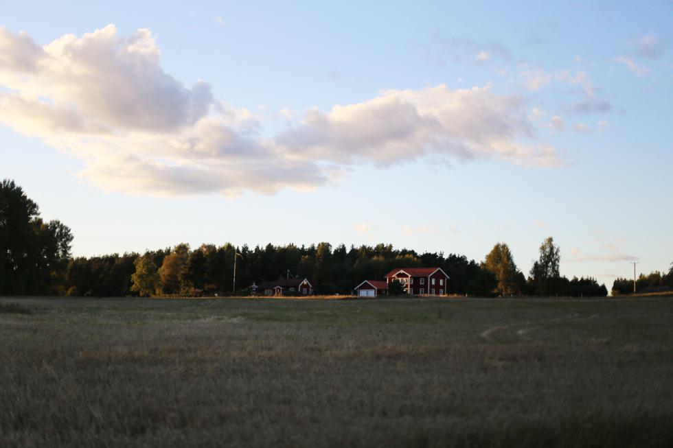 hundraårsfesten-sara edström42
