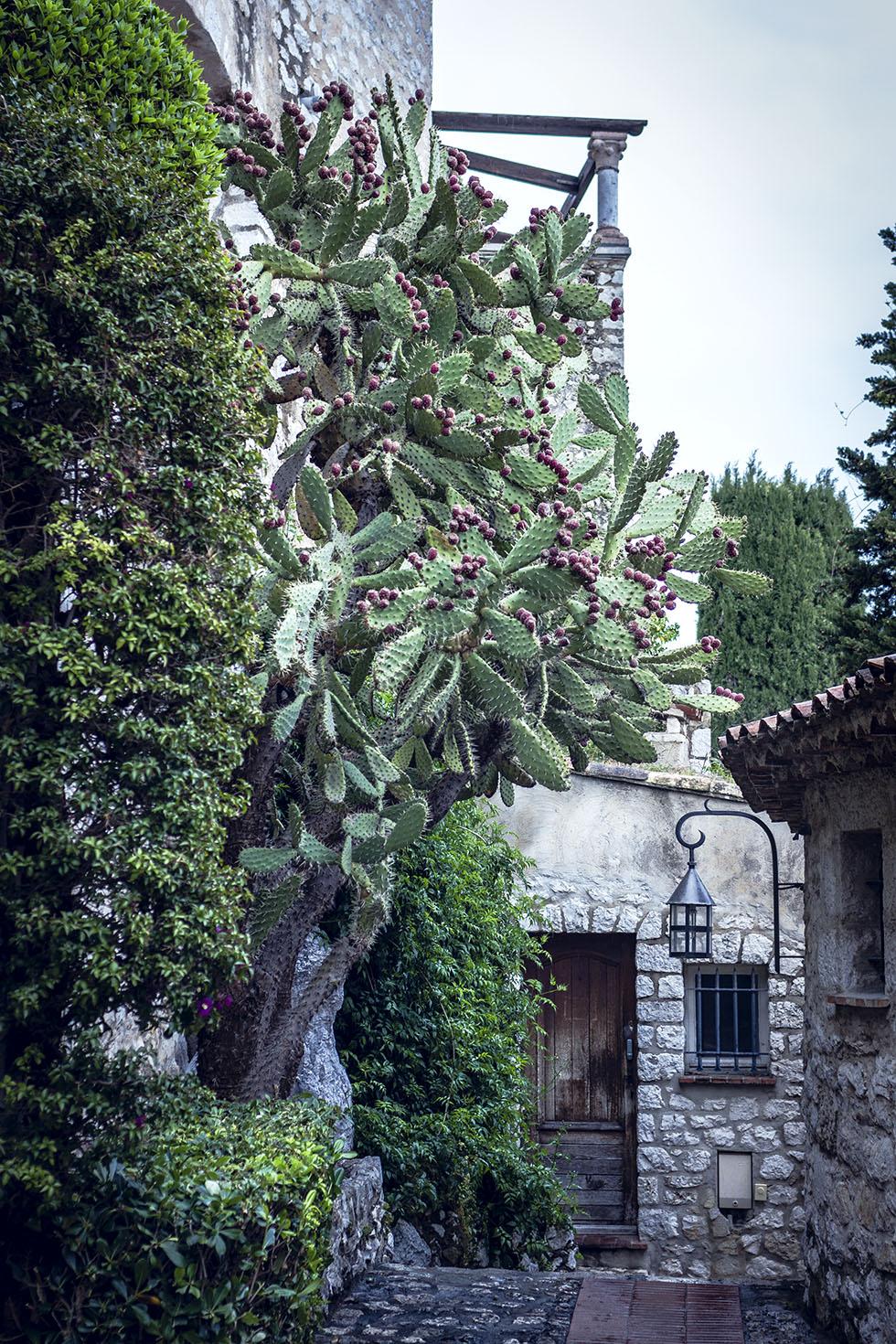 Chateau De La Chevre D'Or IMG_6873