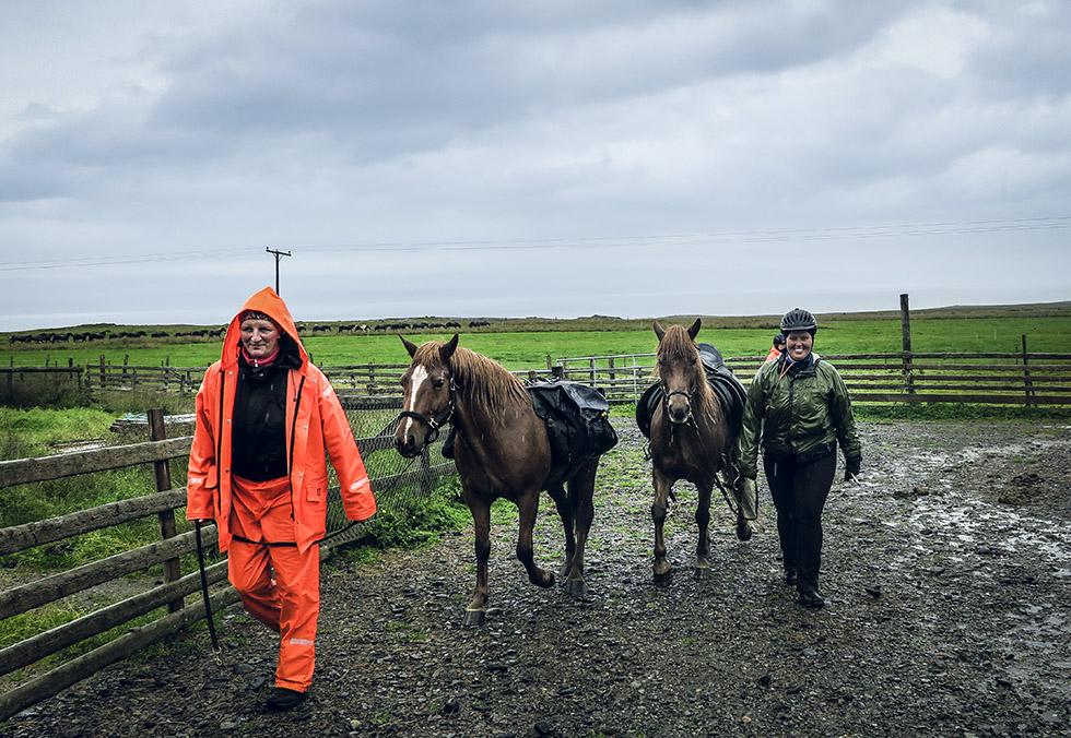 Islandshästar - ridning på Island