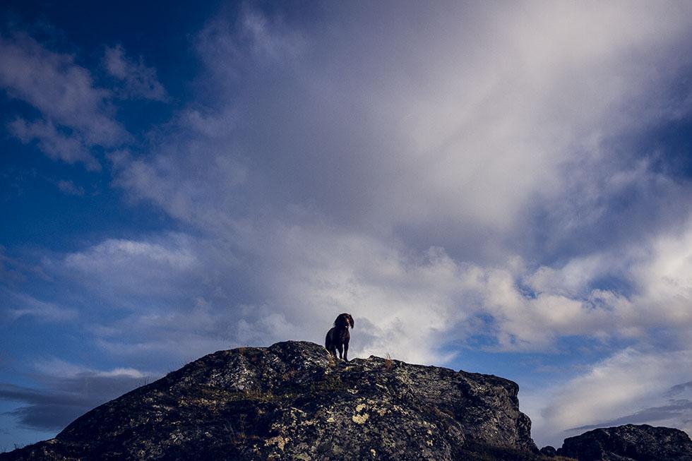vandring Ullådalen Åre