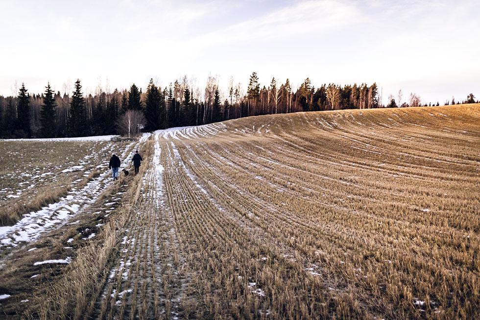 Söräng Hälsingland 5M0A7853