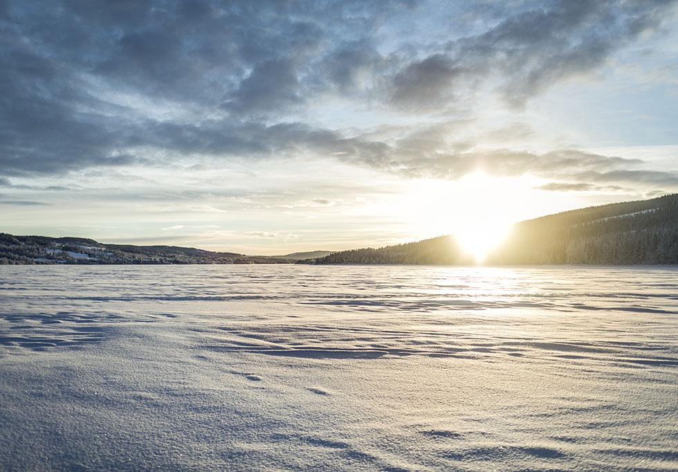 skoter i Åre med Camp Åre 5M0A8938