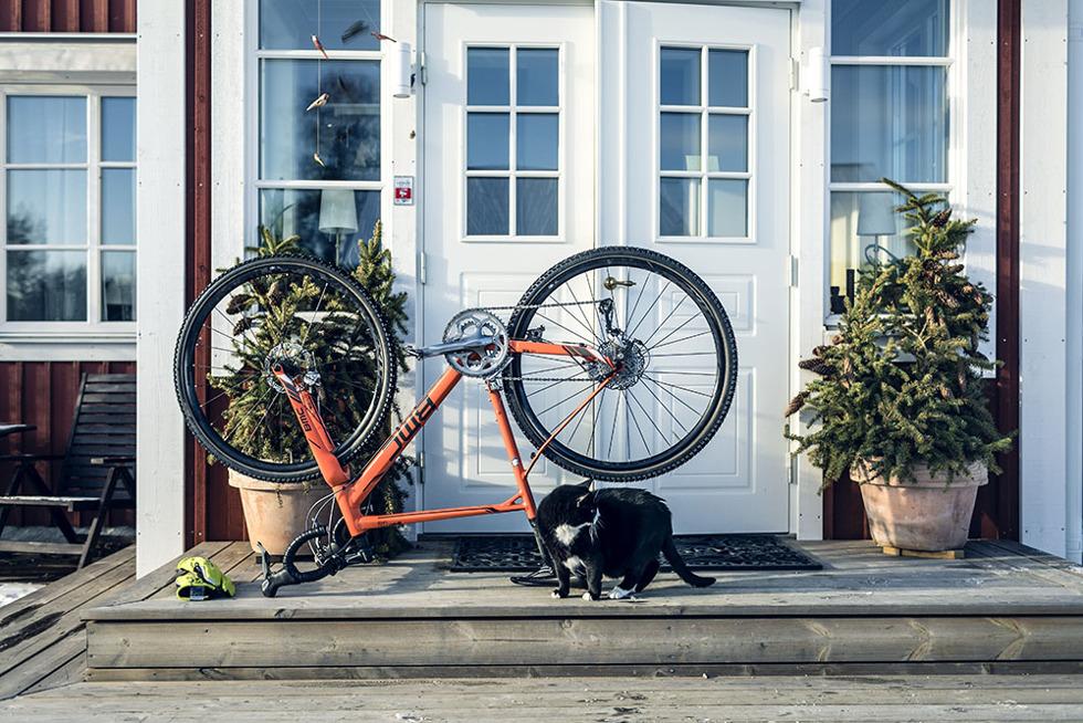 cyclocross-katt-5m0a0218