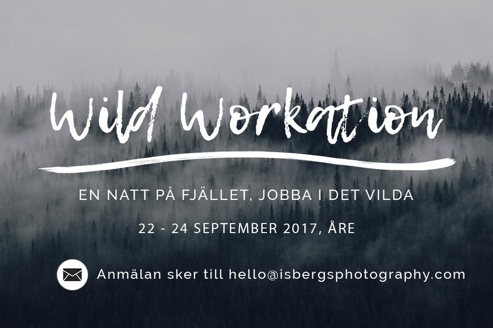 wild workation
