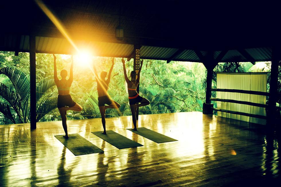 yogautmaning trädet