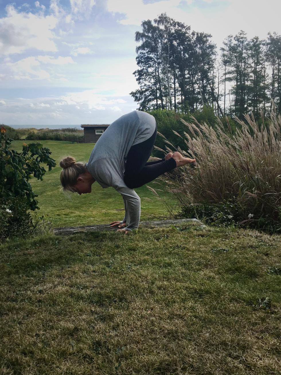 yogautmaning kråkan