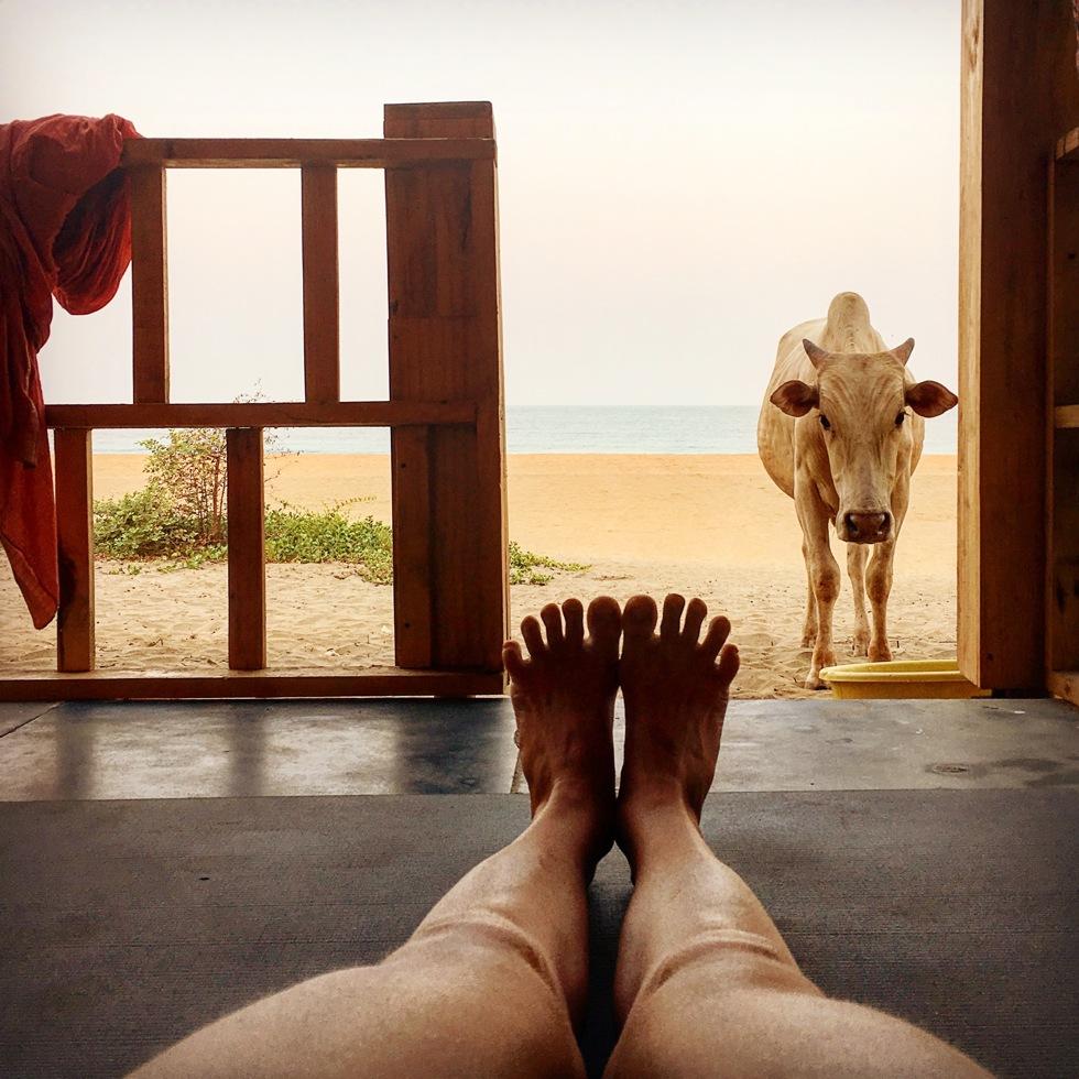 yogautmaning händer och fötter