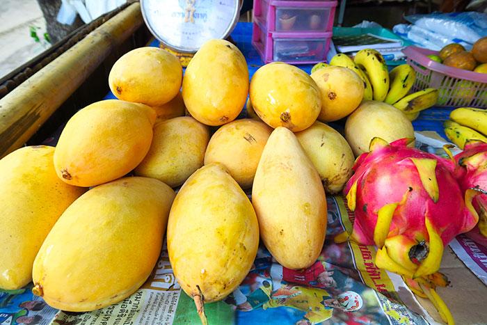 mango-thailand