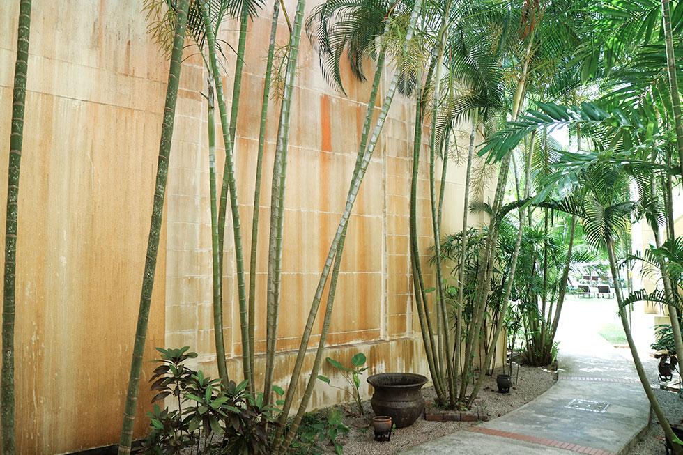 anja-forsnor-thailand-krabi-garden-palmtrees