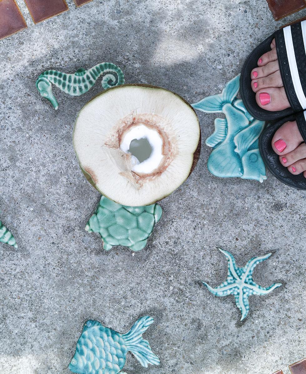 anja-forsnor-thailand-krabi-sofitel-coconut-young-kokos