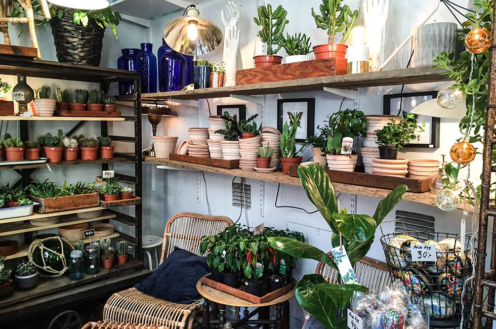 brandstationen-herr-judits-kaktus-krukor-inredning-vintage