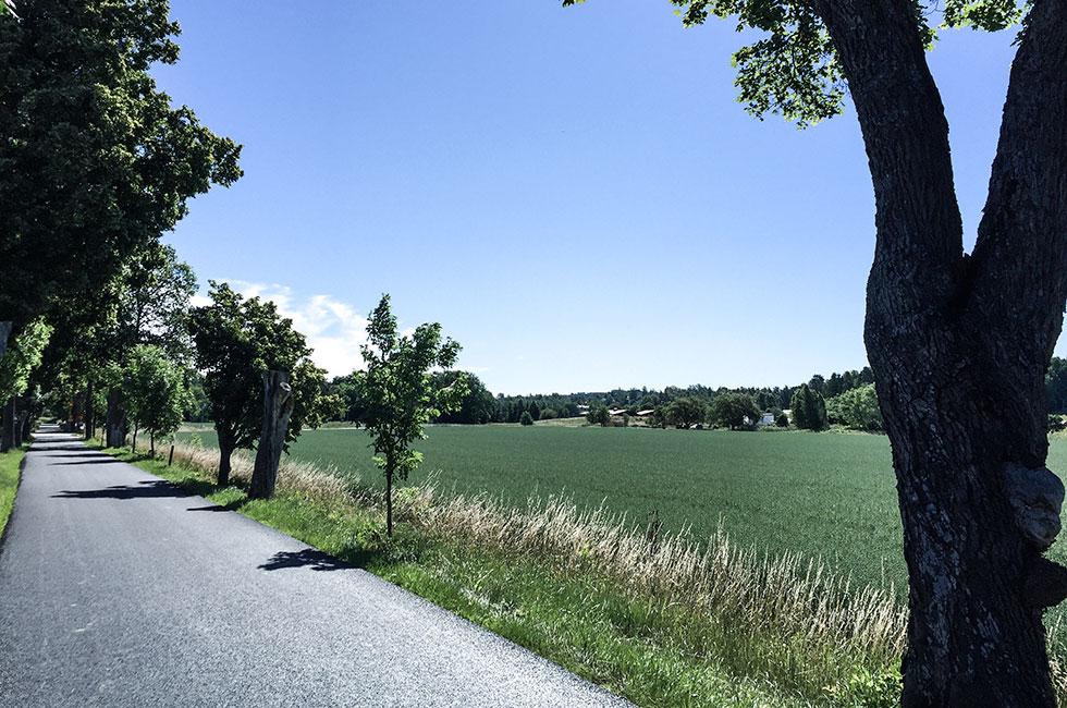 ekero-gallstao-sommar-barnvagnspromenad-springtur