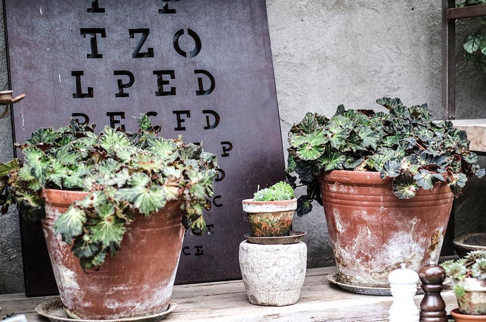 ulriksdal-inredning-blommor