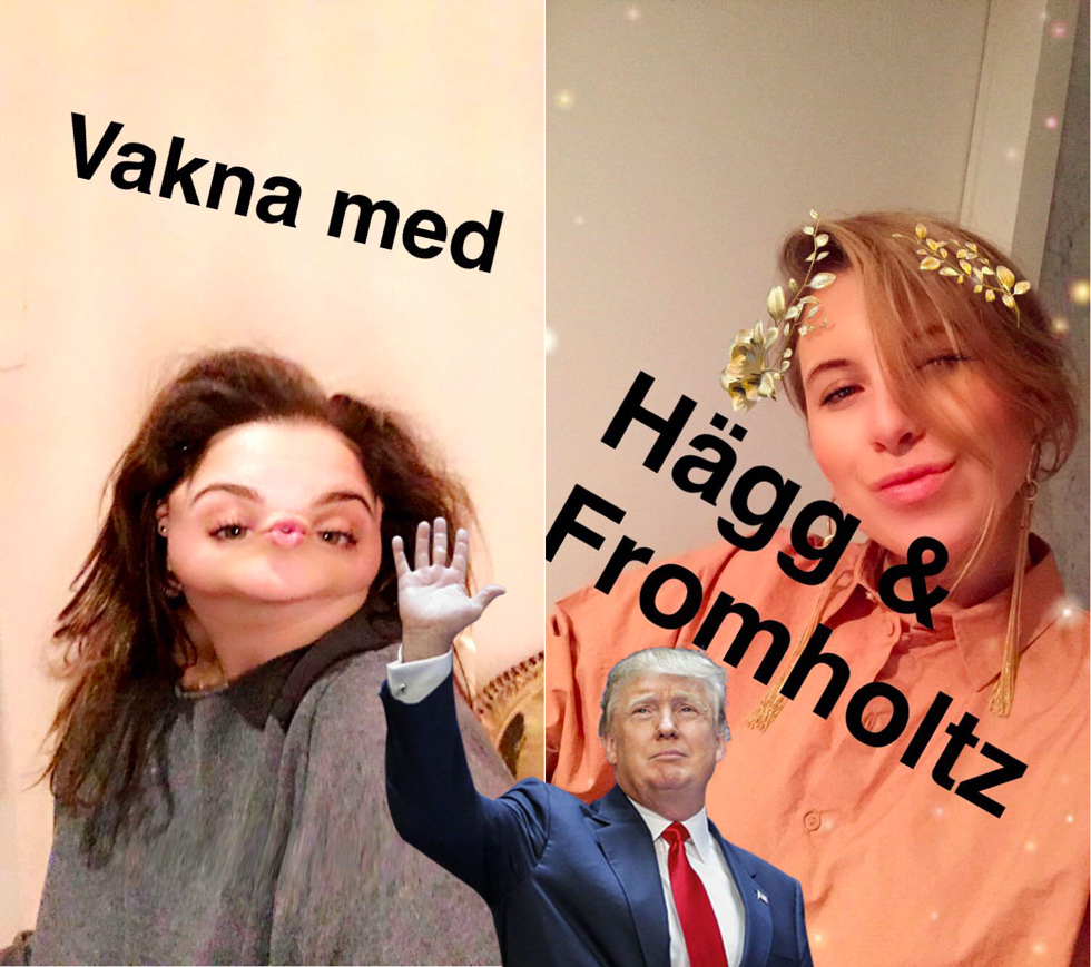 vaknamed_haggochfromholtz